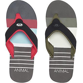 Animal Mens Jekyl înot casual vara alunecare pe plaja sandale de vacanță flip flops