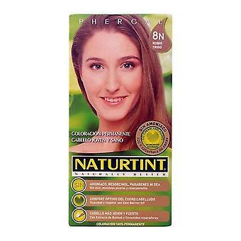Dye No Ammonia Naturtint Naturtint Wheat blonde