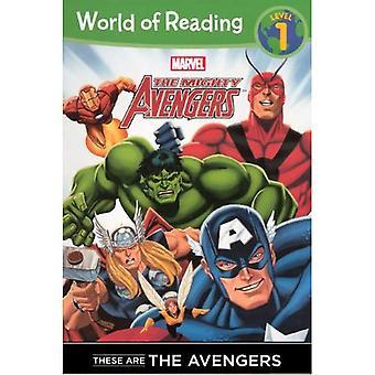 Estos son los Vengadores (Avengers poderosos