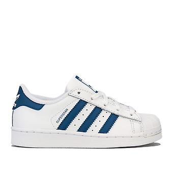 Boy's adidas Originals Childrens Superstar Trainers in White