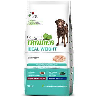 Trainer Light Medium (Dogs , Dog Food , Dry Food)