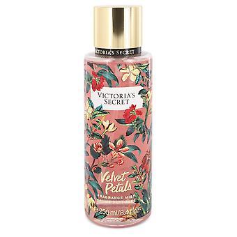 Victoria's Secret Velvet Petals by Victoria's Secret Fragrance Mist Spray 8.4 oz