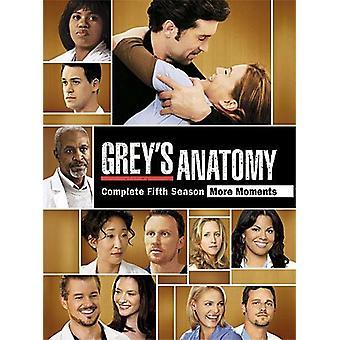 Grey's Anatomy - Grey's Anatomy: Season 5 [DVD] USA import