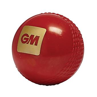Gunn & Moore Tru Bounce Training Cricket Ball Red