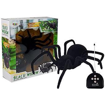 RC Schwarz Witwe Spinne Spielzeug sehr realistisch 30cm