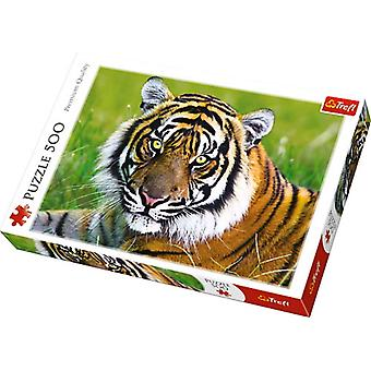 Trefl tiger 500 pieces puzzle premium quality