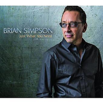 Brian Simpson - importar de USA lo que necesita [CD]