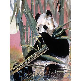 Carolines Schätze JMK1190GF Giant Panda Flagge Garten Größe