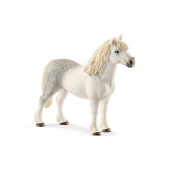 الحصان المهر الويلزية شليتش 13871