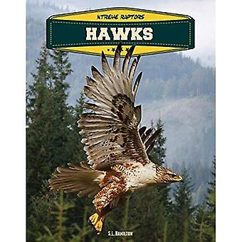 Hawks (Xtreme roofvogels)