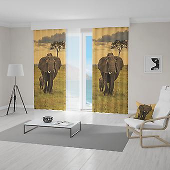 Meesoz Draperieën - Family Of Elephants