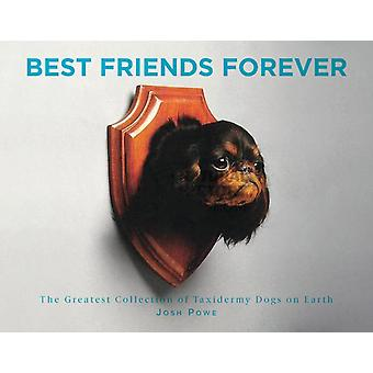 Best Friends Forever The Greatest Collection of Taxidermy Dogs on Earth by J.D. Powe