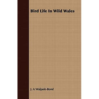Bird Life In Wild Wales by WalpoleBond & J. A