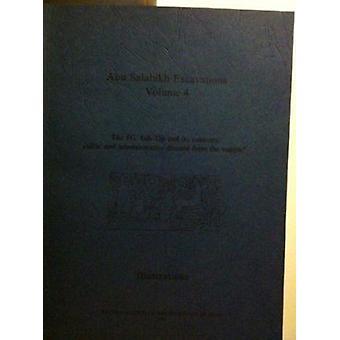 Abu Salabikh Excavations Vol 4 - The 6G Ash-Tip and its Contents - cult