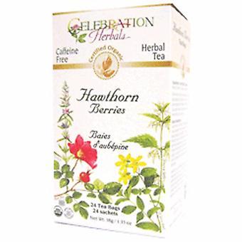 Celebration Herbals Organic Hawthorn Berries Tea, 24 Bags