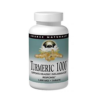 Source Naturals Turmeric Extract, 1000 mg, 120 Tabs