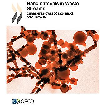 Nanomaterials in Waste Streams - Current Knowledge on Risks and Impact