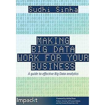 Making Big Data Work for Your Business by Sinha & Sudhi