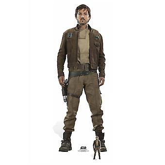 Captain Cassian Andor Rogue One: A Star Wars Story Lifesize Cardboard Cutout / Standee