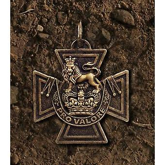 Glory and Dishonour - Victoria Cross Heroes Whose Lives Ended in Trage