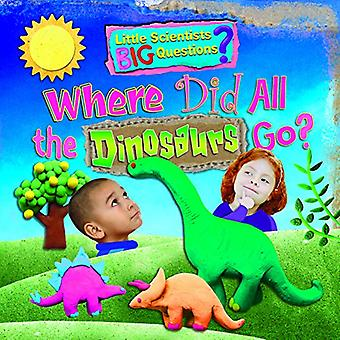 Where Did All the Dinosaurs Go? by Ruth Owen - 9781788560245 Book