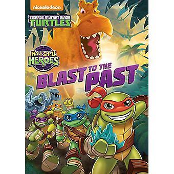 Teenage Mutant Ninja Turtles: Half-Shell Heroes [DVD] USA import