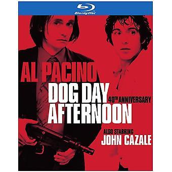 Hund Day Afternoon 40 års jubilæum [Blu-ray] USA import