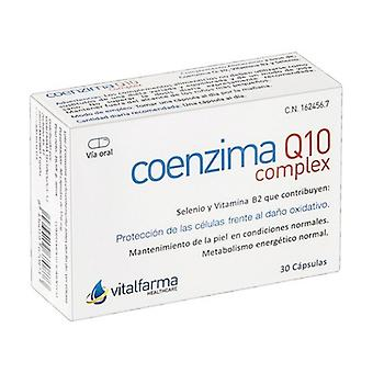 Coenzyme Q10 30 capsules of 40mg