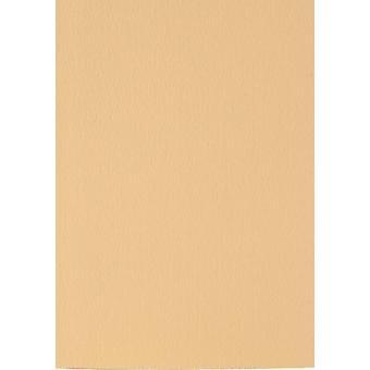 Papicolor 6x karton 210X297mm-A4 Caramel