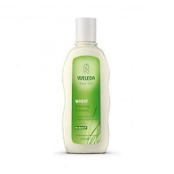 Weleda - blé équilibrage shampooing 190ml