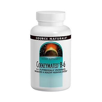Lähde Naturals Koentsymated B-6, 100 mg, 30 Tabs