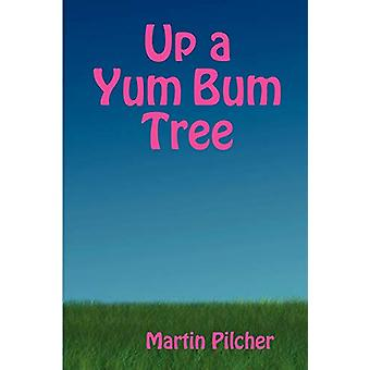 Up a Yum Bum Tree by Martin Pilcher - 9780955681905 Book