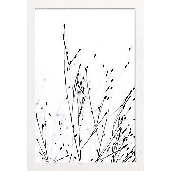 JUNIQE Print - Sort græs - Blade og planter Plakat i sort-hvid