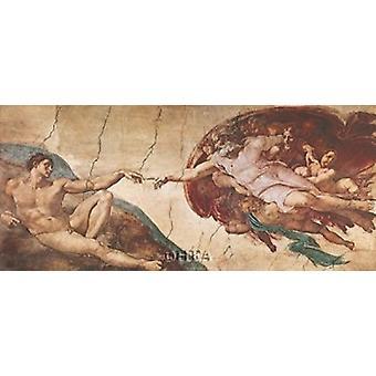 Création de l'homme Poster imprimé par Michelangelo Buonarroti (23 x 13)