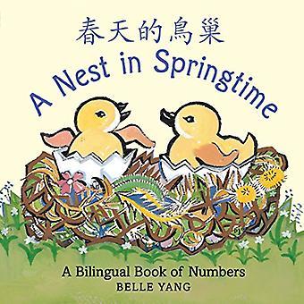 Et reir om våren: en tospråklig bok av tall
