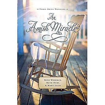 Un miracolo dei Amish