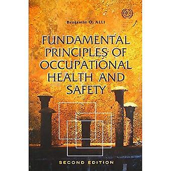 Fundamentele beginselen van de gezondheid en veiligheid