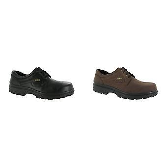Cotswold Shipston Mens Lace Up schoen / Mens schoenen / kant Herenschoenen