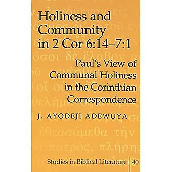 Holiness And Community in 2 Cor 6: 14-7:1: Paul's View of Communal Holiness in the Corinthian Correspondence: 40 (Studies in Biblical Literature)