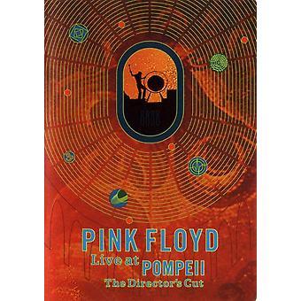 Pink Floyd Live at Pompeji Movie Poster (11 x 17)