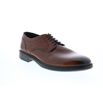 Geox U Terence Mens Brown Leather Oxfords & Lace Ups Plain Toe Shoes