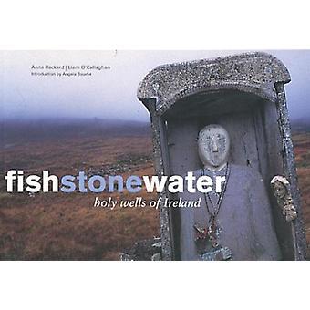 Fish Stone Water by Anna RackardLiam OCallaghanDavid Joyce