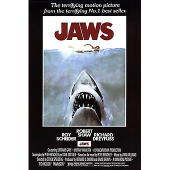 JAWS film affisch Skriv (24 x 36)