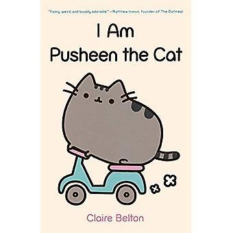 Ich bin Pusheen der Katze