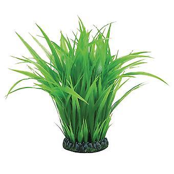 Anello BiOrb Grass-large