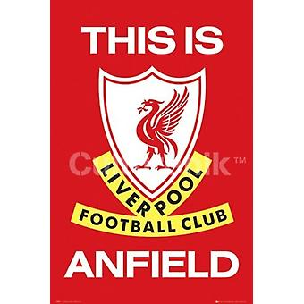 Liverpool This Is Anfield Poster Print (36 X 24)