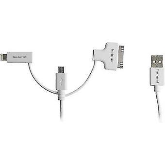 Hähnel Fototechnik USB / Mikro-USB / Yıldırım / 30-Pin 10006510 Şarj kablosu
