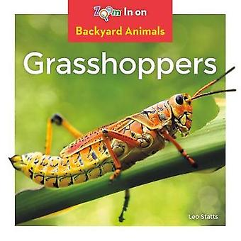 Grasshoppers by Leo Statts - 9781532120053 Book