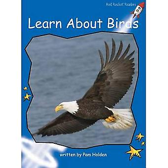 Learn About Birds by Pam Holden - 9781776540808 Book