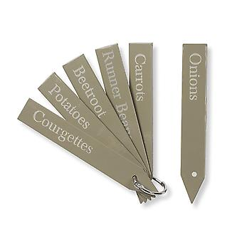 Lot de 6 plantes Tags (Small) - groseille